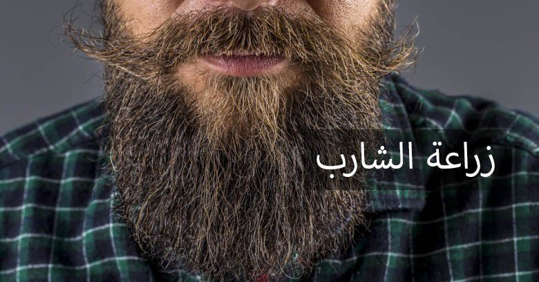 زراعة الشعر المباشرة بأقلام تشوي ودمجها بالـ OSL في تركيا 1