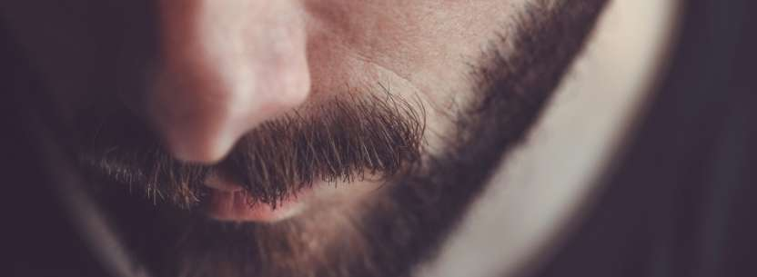 Mustasch Transplantation